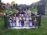 Ref: BP015 Rochdale Cemetary Railings